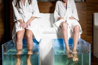 Få mjuka fötter  med Fish Spa