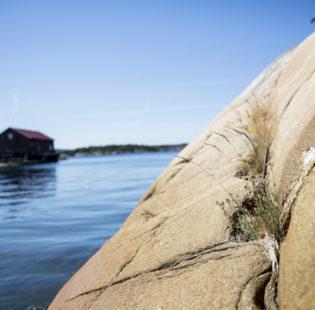 Outdoor Nötholmen Naturreservat