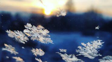 Vinterlovsspecial - Family First 2 dagars-paket